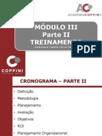 moduloIIItreinamento.pdf