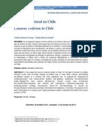 Turismo Cultural en Chile
