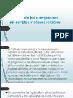 Division de Los Campesinos