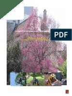 Artículo Elementos de Manejo de Árboles Urbanos