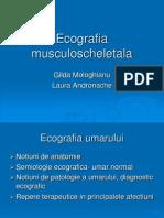 Ecografie Musculoscheletala]