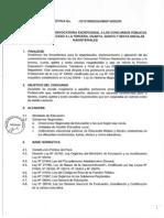 Directiva de Ascenso de Nivel Directores Peru 2014