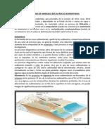 ASOCIACIONES DE MINERALES EM LAS ROCAS SEDIMENTARIAS.docx