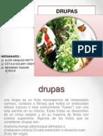 Presentación Drupas TERMINADO