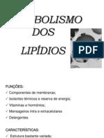Metabolismo de Ácidos Graxos 2014