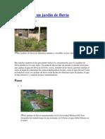 Cómo Crear Un Jardín de Lluvia