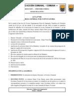 Formato de Elaboracion de Actas de Asamblea y Junta