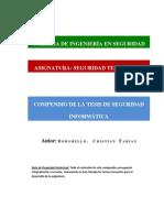 COMPENDIO__TESIS_BORGUELLO (1).pdf
