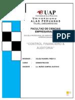 Control Financiero - Auditorias 1