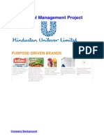 Corporate Finance - HUL Project Report V1