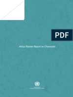 AfricanReviewReport on ChemicalsMainReport