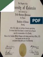 diploma bsn