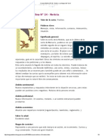 Oraculo Belline Nº 24 - Noticia _ La Magia Del Tarot