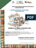 Informe Cadena Maiz Oaxaca 2013