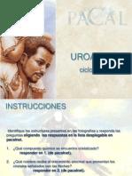 URO 1306