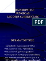 Dermatologia Veterinaria - Micologia Cutanea