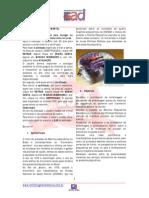 EAD-Enfermagem a Distância-Material Do Curso[Enfermagem Em Saúde Mental]