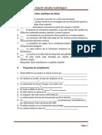 Guía estudio audiología 1.docx