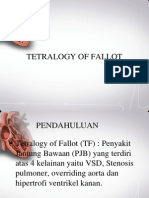 Tetralogy of Fallot - NN (PP)