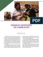 PDF Proyectos de Apoyo Al Desarrollo Regional Manejo Sanitario de Camelidos Ayacucho y Huancavelica