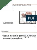 6._Polisacáridos