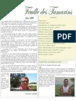 FT_novembre 2009.pdf