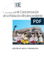 Informe de Resultados Encuesta de Caracterizacion de La Poblacion Afrodescendiente de La Region de Arica y Parinacota 2013