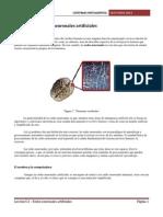 Leccion 5.3 - Redes Neuronales