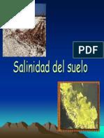 Tema 9 Salinidad Del Suelo