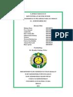 laporan kegiatan kkp