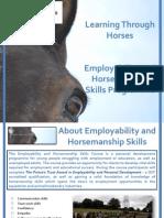 learning through horses employability and horsemanship skills programme
