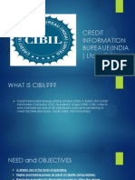 Credit Information Bureaue(India) Ltd