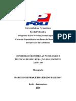 Considerações Sobre as Patologias e Técnicas de Recuperação Do Concreto Armado