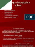 4 Patologia splinei