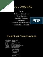 Pseudomonas Sp