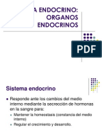 12 Sistema Endocrino