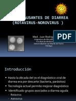 Virus de Diarrea_ Chic_USMP_ 2013