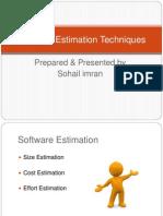 Software Estimation Techniques
