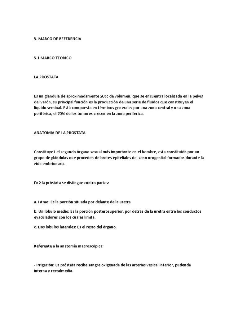 Cancer de Prostata Proyecto Marianny