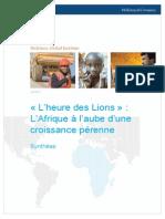 MGI Lions on the Move French Translation Executive Summary