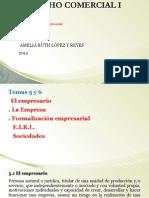 TEMAS 5 y 6 - El Empresario La Empresa Formalizacion