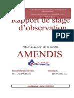 Rapport Amendis (1)