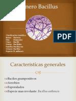 Bacillus y Listeria