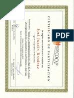 Certificado Plan de Negocio 2012 - JJ Ramírez
