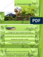 Reforestacion y Conversion de Basura