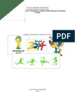 Projeto Copa Do Mundo Para o Primário