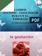 Cambios Anatomofisiologico en La Gestacion