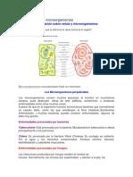 Las Células y Los Microorganismos