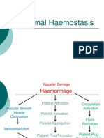 Shanks - Normal Haemostasis_STP