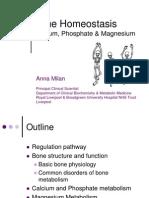 Milan - Bone Calcium